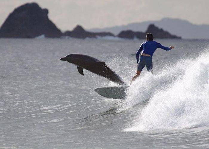 surftrip surfcamp australie
